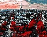 Pintura por número/kit de pintura al óleo de bricolaje/sin marco/pintura al óleo por set 16x20 pulgadas pincel lienzo de pintura acrílica para principiantes con vistas a París 40x50cm