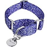 Dazzber Martingale Collars for Dogs – Soft Adjustable Dog Collar, Durable D-ring Heavy Duty, Choke Collar for Large Medium Small Dogs (Extra Small, 1.5cm Wide, Royal Blue -ACC)