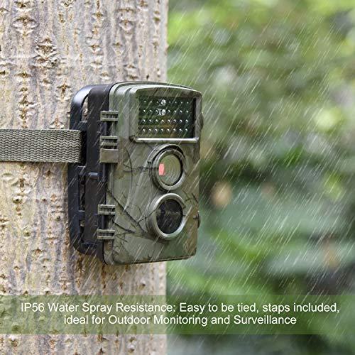 AlfaView Wildkamera Fotofalle 12MP Erfahrungen & Preisvergleich