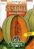 Sementi di ortaggi ibride e selezioni speciali ad uso amatoriale in buste termosaldate (80 varietà) (MELONE MOMO F1)
