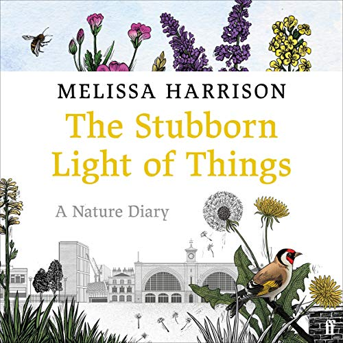 The Stubborn Light of Things Titelbild