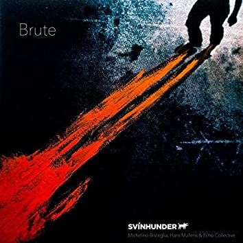 Brute (feat. Echo Collective)