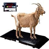 Livestock Animal Scales, Medium Size Animals Vet Scale for Goat/Calf/Pig, 2000 x 0.2 lb Ca...
