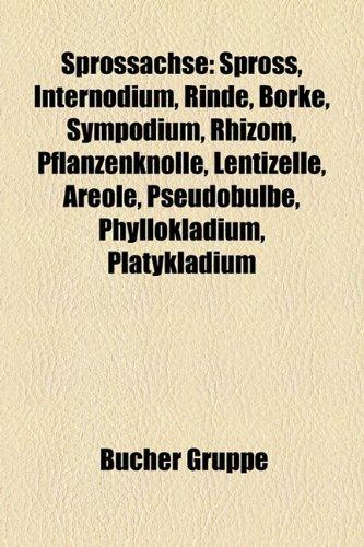 Sprossachse: Spross, Internodium, Rinde, Borke, Sympodium, Rhizom, Pflanzenknolle, Lentizelle, Areole, Pseudobulbe, Phyllokladium,