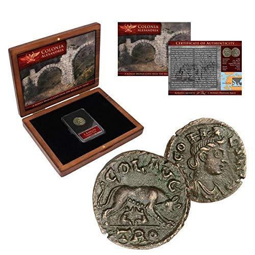 IMPACTO COLECCIONABLES Monete antiche - Bronzo di Alessandria. Romolo e Remo con la Lupa