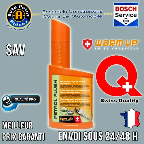 Warm Up - Petrol Flush PF300 -Limpiador del sistema de inyección de gasolina, anti polución, 300ml