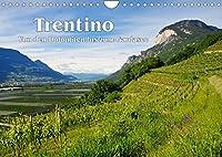 Trentino - Von den Dolomiten bis zum Gardasee (Wandkalender 2022 DIN A4 quer): Entdeckungen im noerdlichen Italien (Monatskalender, 14 Seiten )