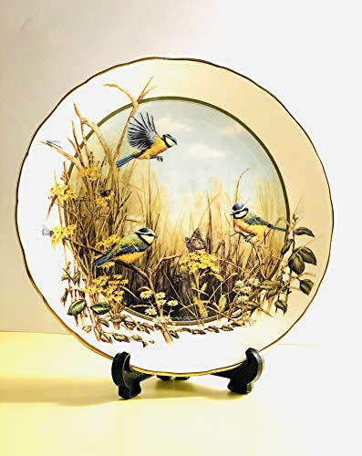 Royal Doulton Deko Teller – Ein Heiterkeit von Blau von Mark Chester in die Jahreszeiten der Hedgerow Collection – Bradex 26-r62–103.1