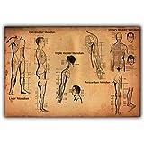 Puntos de acupuntura humana Cartel Ciencia y educación Medicina Decoración del hogar Cartel Imagen Imprimir-60x60cm Sin marco