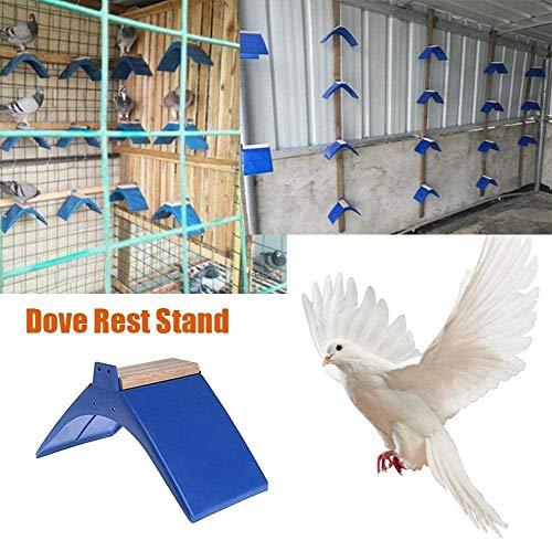 CVERY Pájaro, soporte para palomas, 20 unidades, soporte marco de rejilla Dwelling, perca, perca, percha, percha, accesorio para decoración del hogar, azul, talla abierta