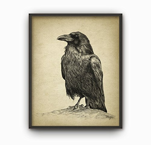 MS Fun Vintage Raven Canvas Poster for Bedroom Decor 8 x 10 Inches,No Frame