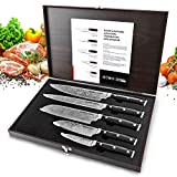 Knife Set, HOBO Professional Kitchen Knife Set with Wooden Box, Stainless Steel Finish, Includes Chef Knife, Bread Knife, Carving Knife, Utility Knife and Paring Knife (5 Pieces)