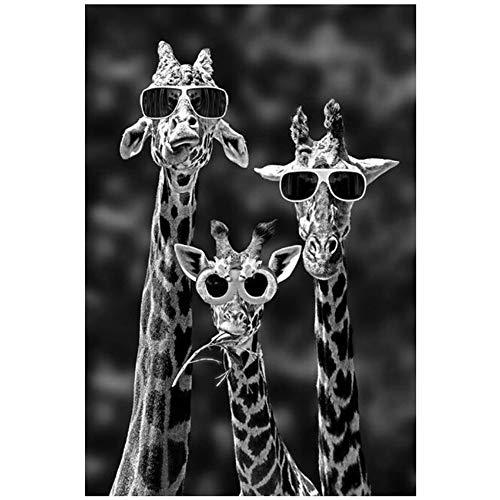 LiangNiInc Leinwand Bilder Giraffen Sonnenbrillen Lustige Tiere Wandkunst Bilder Kinderzimmer Wohnkultur Kunst Poster-50x70cm (19.7
