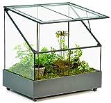 H Potter Terrarium Wardian Case Plant Container Succulent Planter Fairy Garden Display Case WAR153