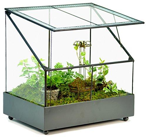 Fairy Garden Terrarium Display Case