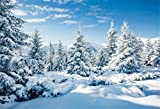 CSFOTO 7x5ft Winter Landscape Backdrop Winter Forest Ice and Snow World Theme Baby Shower Banner Christmas New Year Party Background for Photography Kids Adults Photo Wallpaper