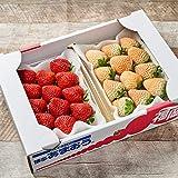 南国フルーツ 福岡産紅白いちご2パック