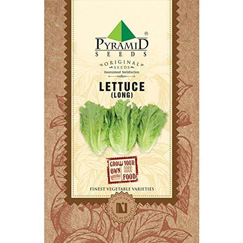 Pyramid Long Lettuce Romaine Seeds (2g, Green)