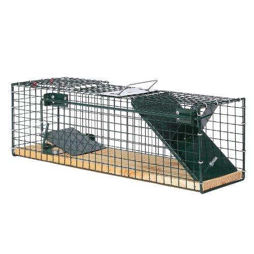 Moorland Safe 6041 Lebendfalle 55x15x19cm cm mit Holzboden als stabile Tierfalle für z.B Ratten, Marder, Iltis, Katzen…