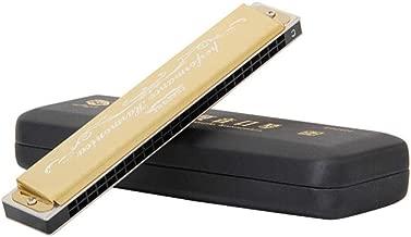 HENG Armónica, Trémolo Armónica negra C de 24 hoyos, diseño de calidad, hermoso sonido (negro/azul/dorado/verde) with Case and Polishing cloth (Color : Gold)