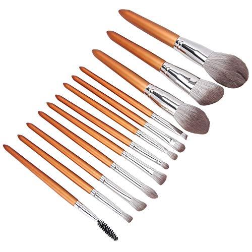 Kit de pinceaux en poudre, ensemble de pinceaux de beauté en poudre d'apparence élégante, kit de pinceaux de maquillage pour le visage pour le maquillage des mèches