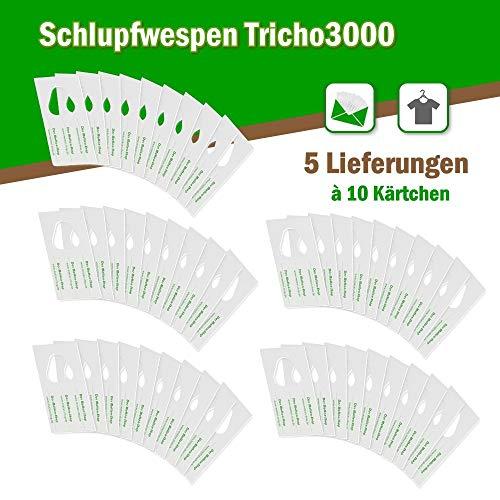 Schlupfwespen gegen Kleidermotten 10 Kärtchen x 5 Lieferungen AKTIONSPACK
