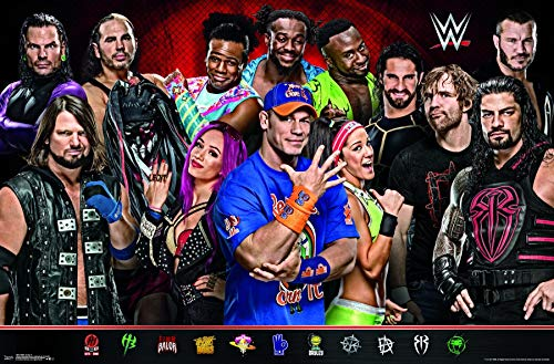 FatCat Wall Graphics WWE - Group 17 - Matte Poster Frameless Gift 12 x 18 inch(30cm x 46cm)-MS-GZ016