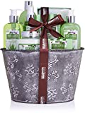 BRUBAKER Cosmetics Set de Baño y Ducha Aloe Vera Fragancia de Lavanda - 9 piezas set de regalo en una jardinera vintage