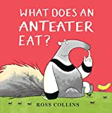 Image of What Does An Anteater Eat?