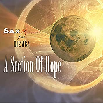 A Section of Hope