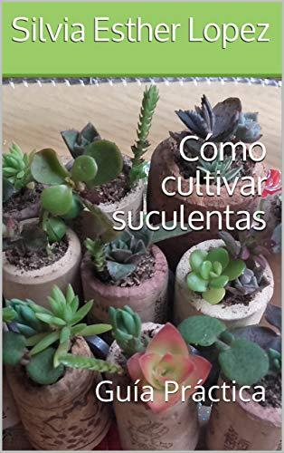 Cómo cultivar suculentas: Guía Práctica