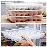 Todaytop Kühlschrank Eierbox Eierbehälter Multifunktionsbox Transportbox für 34 Eier mit Deckel,Eierbehälter aus Kunststoff,34.5 * 25.5 * 7.5cm