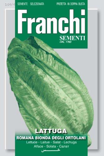 Franchi Samen Römersalat / Blattsalat Bionda