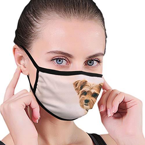 Dingl Black Edge stofdicht masker, lang gecoate bruine puppy, zacht en comfortabel, geschikt voor iedereen om te dragen