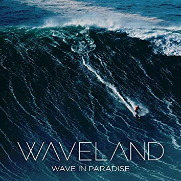 Wave in Paradise