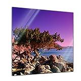 Glasbild - Mediteraner Baum - Rhodos Griechenland - 20 x 20 cm - Deko Glas - Wandbild aus Glas - Bild auf Glas - Moderne Glasbilder - Glasfoto - Echtglas - kein Acryl - Handmade