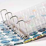 Hojas de plástico COMPART para 42 placas de cava/chapas, transparentes, paquete de 5