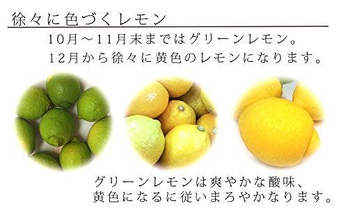 豊島越智農園『広島産無人島レモン約2.5kg』