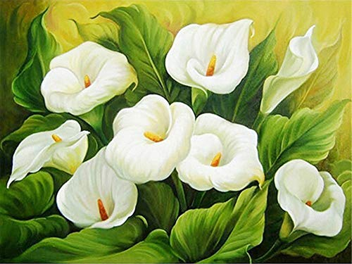 DIY 5D Diamond Painting Kits Full Drill,Crystal Rhinestone Cross Stitch Diamond Painting Adults/Kids Mosaic Pictures Embroidery Art Craft for Home Wall Decor(White Flower 50x60cm/20x24in Round Drill)