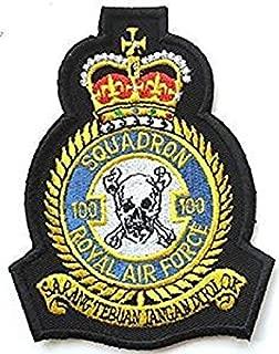 raf 100 badge