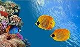 CRTTRC Juego de pensamiento Puzzles para adultos 1000 piezas rompecabezas grandes juguetes para adultos (75 x 50 cm) descomprimir divertido juego submarino pescado animal cartel EFR1031