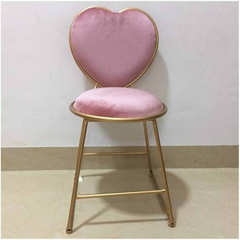 YJWOZ Metal Restaurant Study Bedroom Wrought Iron Chair High Rebound Sponge Cushion Makeup Chair Five colors Optional 40cm × 40cm × 80cm Chair (color   B)