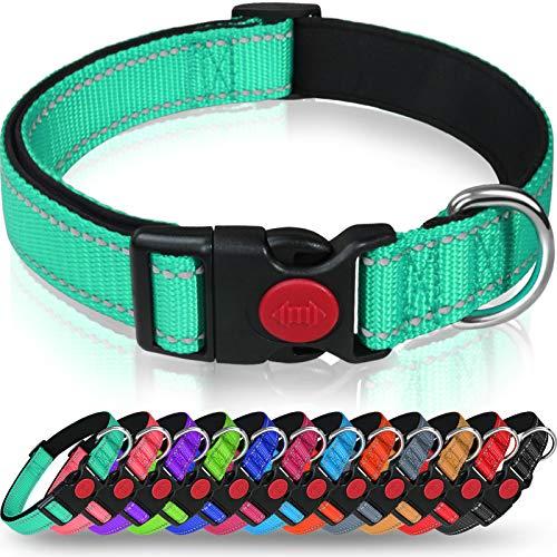 Taglory Collar Perro, Collar Nylon Reflectante Neopreno Forrado Ajustable para Perros Medianos, Turquesa