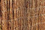 Bruyère écologique Extra 0.80x3m Marron