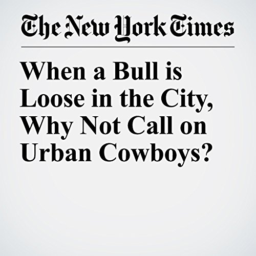 『When a Bull is Loose in the City, Why Not Call on Urban Cowboys?』のカバーアート