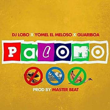 Palomo