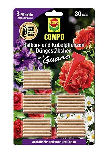COMPO Balkon- und Kübelpflanzen Düngestäbchen mit Guano, 3 Monate Langzeitwirkung, 30 Stück