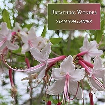 Breathing Wonder
