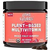 Whole Fruit Gummy Multivitamin for Adults; No Added Sugar, Organic, Plant-Based, Vegan; 13 Whole Food Vitamins (C, D3, B12, Folate); 90 Gummies (30 Days) (Strawberry)