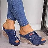 JEVCTCN Feminino sandálias Plataforma verão Dedo Aberto Peixe Boca Cunha sandálias alpercatas sandálias retrô Jeans Flip-Flops para verão caminhada ao ar Livre caminhada na Praia, Azul, 38